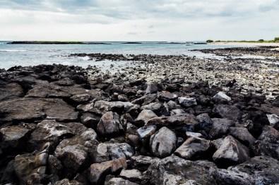Galapagos - Leon Dormino (Kicker Rock) (59 of 61) June 15
