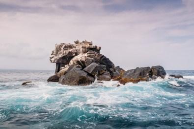 Galapagos - Los Tuneles (54 of 71) June 15