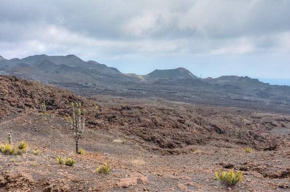 Galapagos - Sierra Negra Volcano (31 of 72) June 15