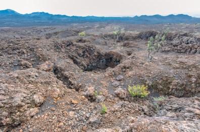 Galapagos - Sierra Negra Volcano (34 of 72) June 15