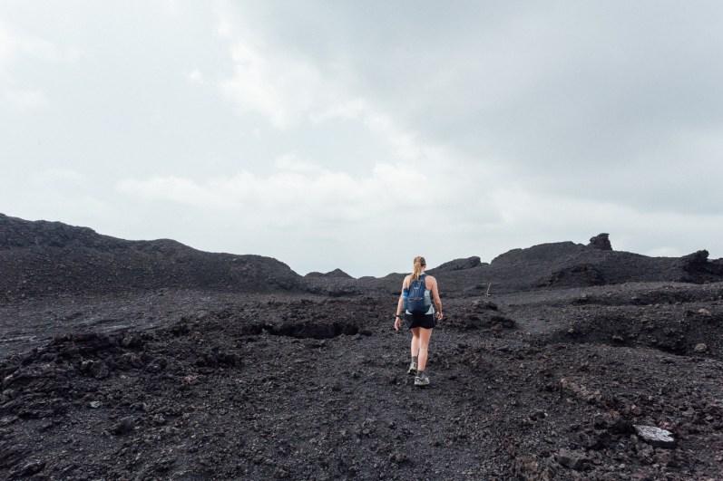 Galapagos - Sierra Negra Volcano (71 of 72) June 15