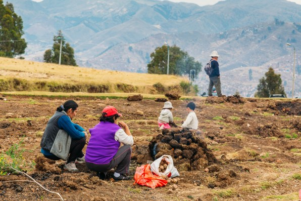 Saksaywaman Cusco Peru -45- July 2015