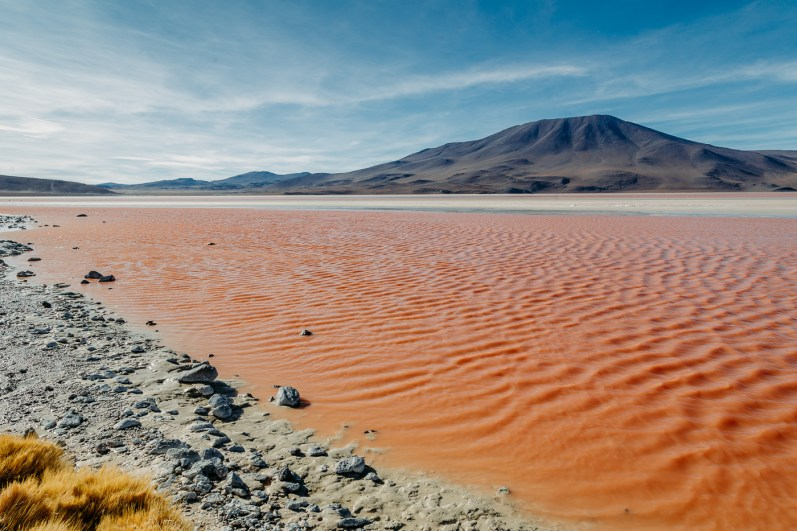 Laguna Colorada - Bolivia's Great Altiplano