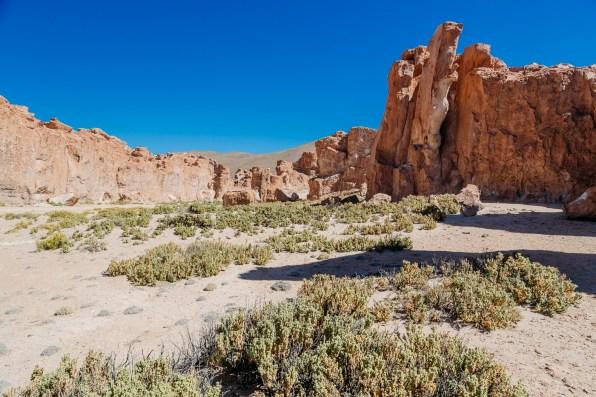 Salar de Uyuni - Bolivia -145- July 2015