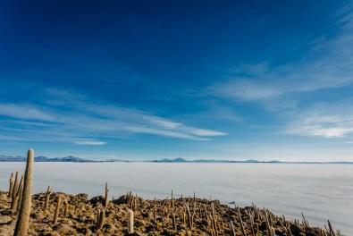 Salar de Uyuni - Bolivia -55- July 2015