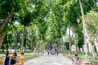 Gulhane Park leading to Topkapi Palace