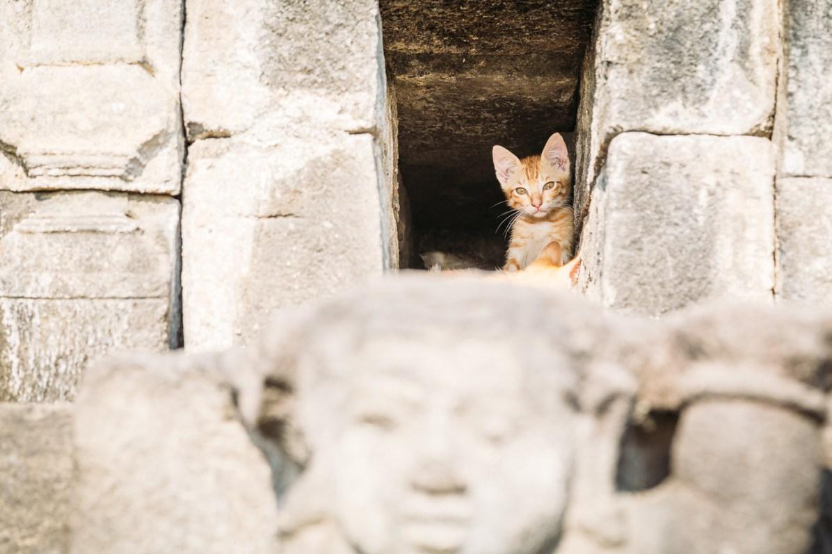 Borobudur Facts
