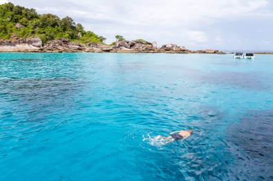 Snorkeling off the shores of the Similan Islands in Similan Islands National Park