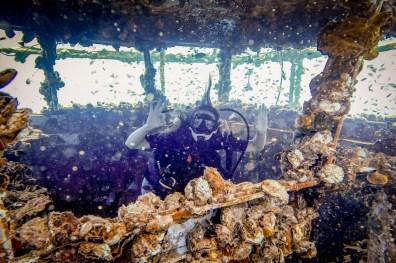 Diving Koh Kood - HTMS Chang Shipwreck -57