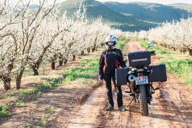 Garden Route South Africa -12