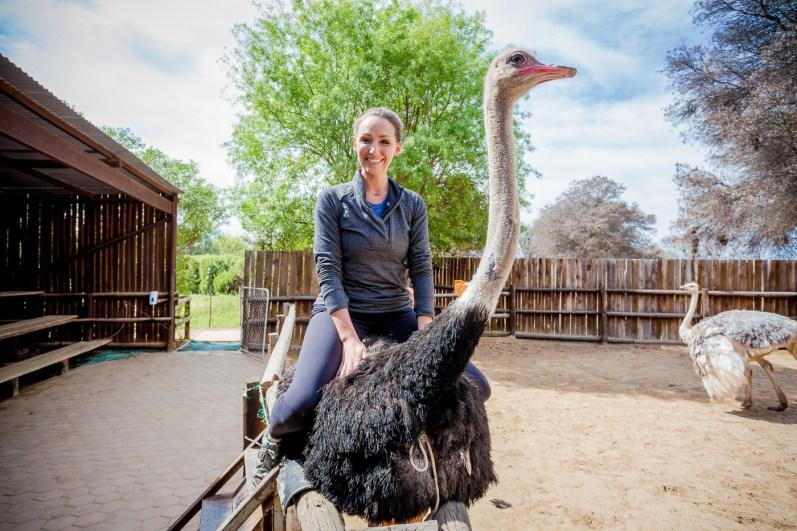 Safari Ostrich Show Farm Oudtshoorn -21