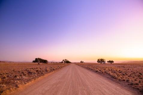 Sossusvlei Sand DunesNamibia -301