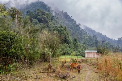 Phong Nha Caving and Trekking -79