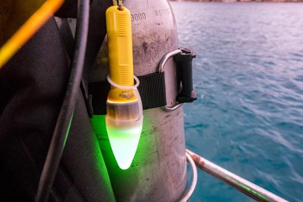 Koh Tao UV Night Scuba Dive -4