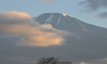 Fat Fitness Friday: The Curvy Kili Crew Sets Sights on Mount Kilimanjaro