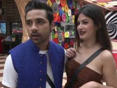 Puneesh-Sharma-Eliminated-Bigg-Boss-11