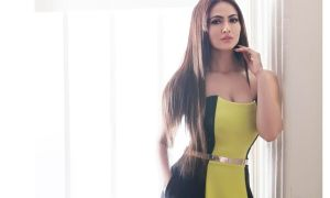 Jai ho, Big Boss, Sana Khan, world film fest, San Francisco