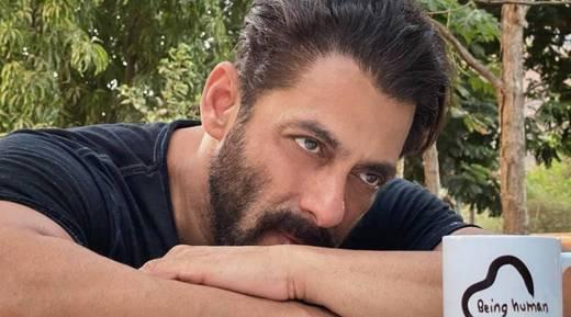 Salman Khan box office king