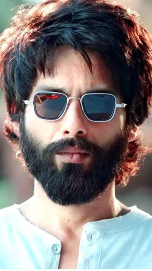 Kabir Singh Lifetime Box Office Collection India Overseas Daywise