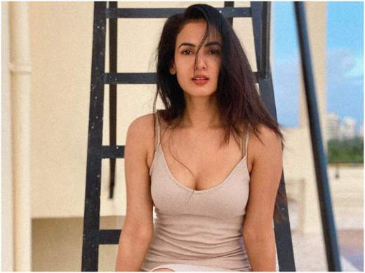 Sonal Chauhan Filmography All Films Hit Flop Box Office Verdict