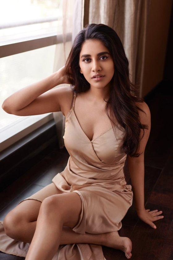 Stunning Latest Pictures Of Nabha Natesh