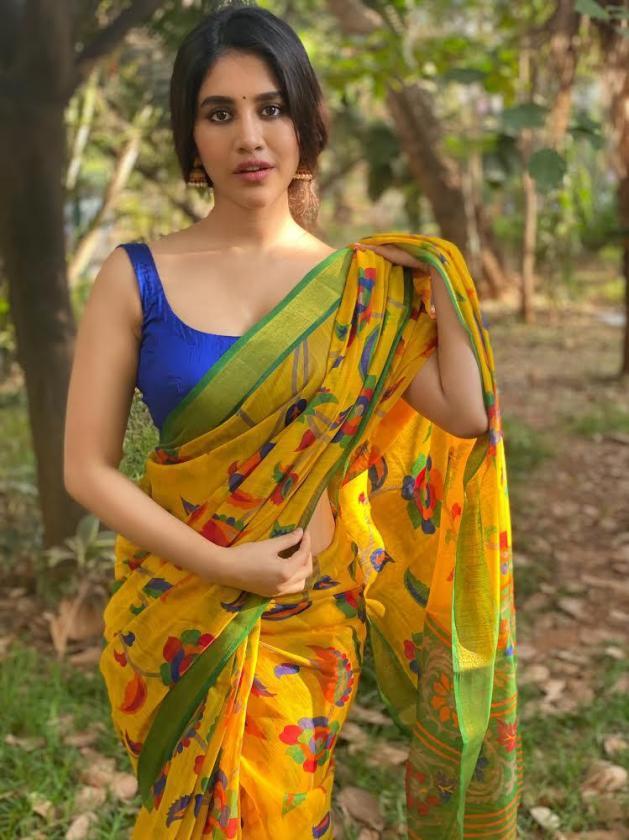Hot Nabha Natesh In Saree