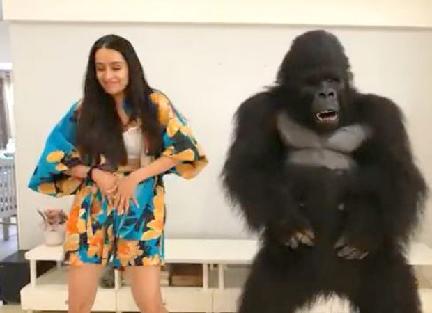 Shraddha Kapoor shakes a leg with ToTo the Gorilla from Hello Charlie; watch