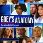 Grey's Anatomy l'intégrale de la saison 8