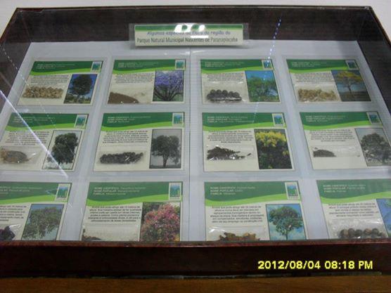 Centro de Visitantes do Parque Natural Municipal Nascentes de Paranapiacaba