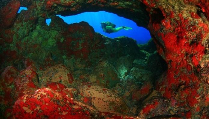 Paraíso dos Mergulhadores nas Ilhas Canárias