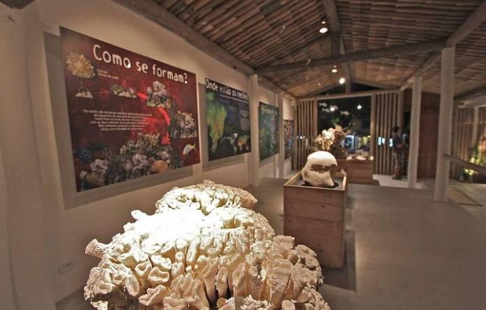 Espaço Coral Vivo Mucugê em Arraial d'Ajuda