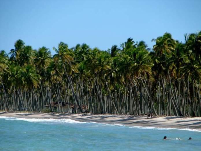 Praia da Cueira na Ilha de Boipeba é uma das praias mais bonitas da Bahia