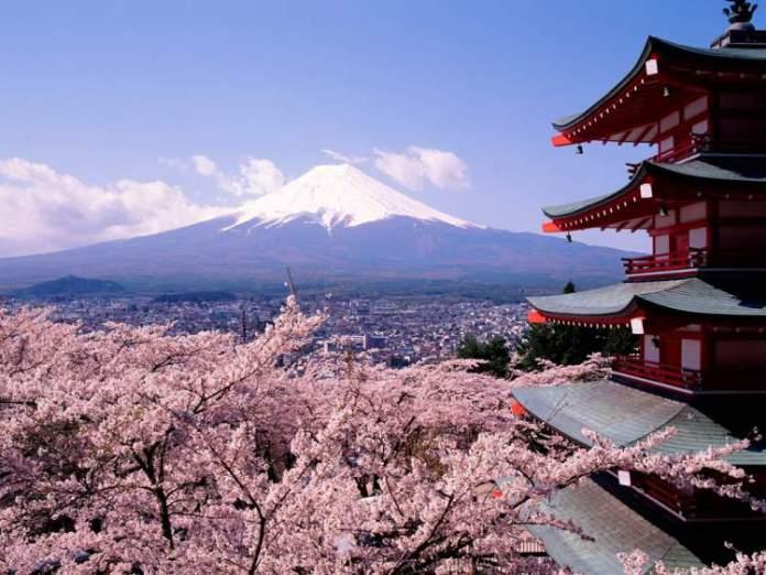 Kyoto, Japão – Florada das cerejeiras