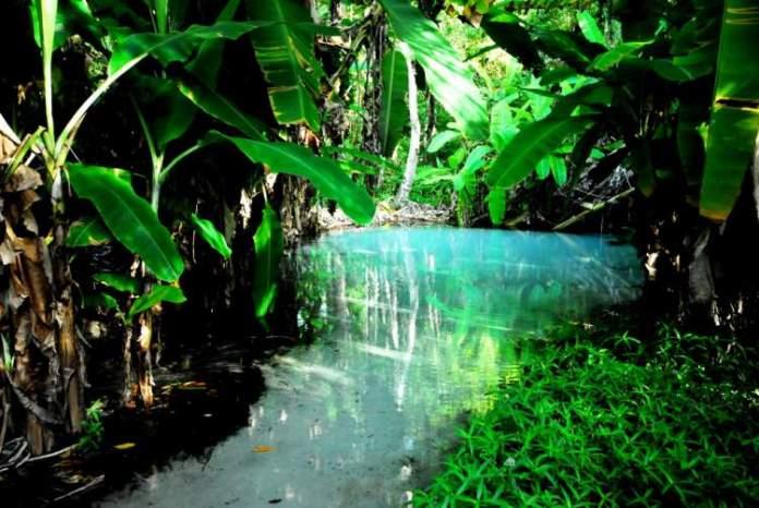 Parque Estadual do Jalapão - Tocantins é um dos lugares no Brasil de tirar o fôlego