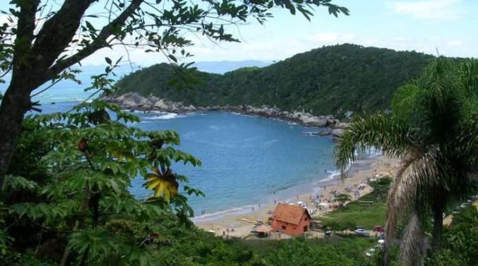 Praia da Tainha, Bombinhas é uma das praias mais lindas do Sul Brasileiro