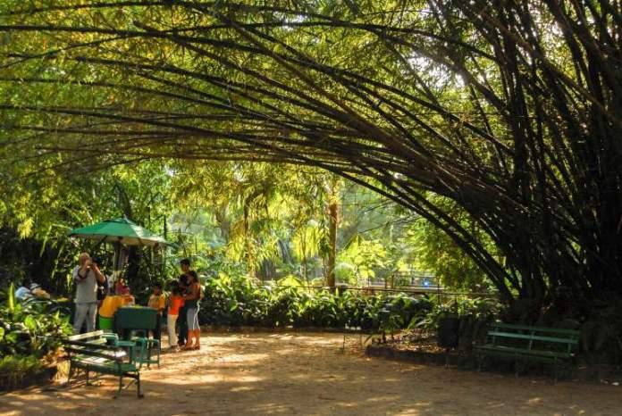 Visitar o Parque Emílio Goeldi é uma das opções de o que fazer em Belém
