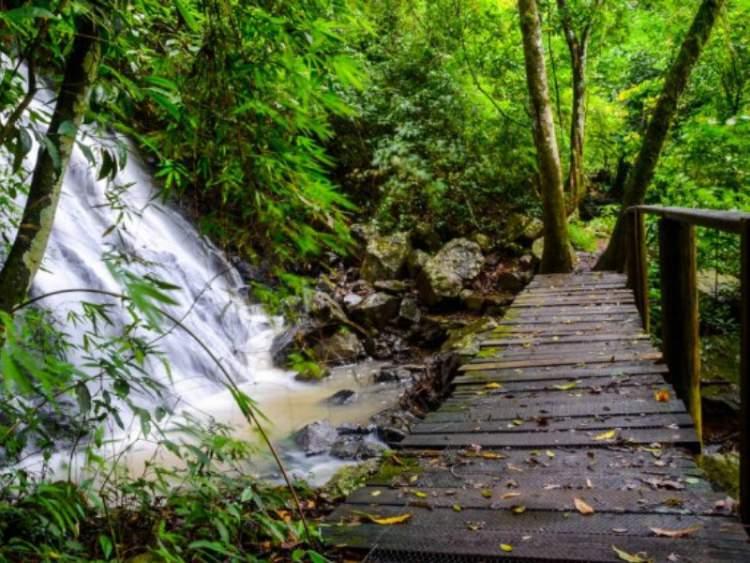 Visitar o Eco Parque Sperry é uma das opções de o que fazer em Canela