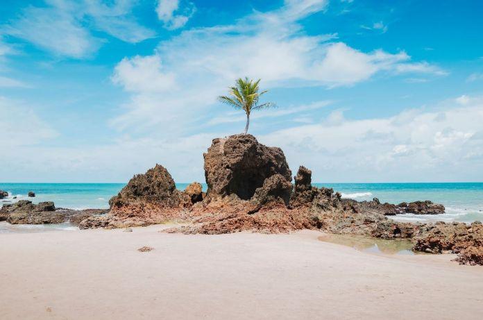 Vista da praia de Tambaba, Costa do Conde, Paraíba, Brasil. Famosa praia junto ao coqueiro que crescia em cima de uma rocha. Bela praia do nordeste brasileiro [Foto: shutterstock]