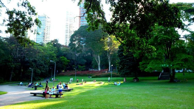 O que fazer em São Paulo: Visitar o Parque do Ibirapuera
