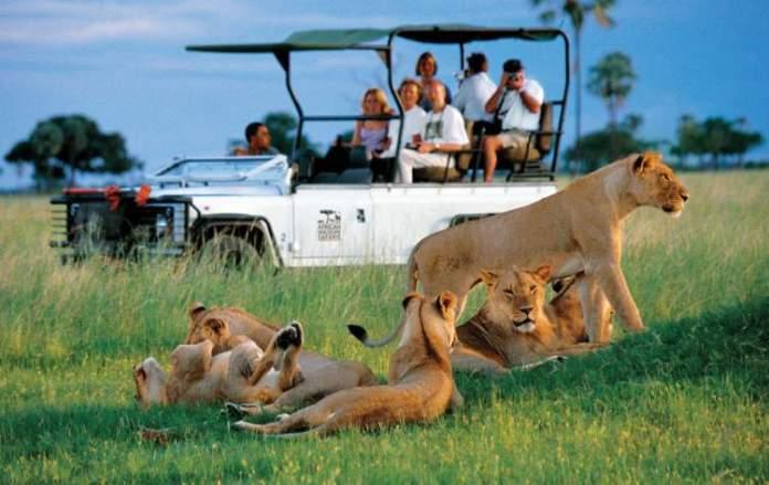 Safári na África no Parque Nacional de Hwange