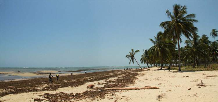 Vila da Várzea do Una é uma das melhores Praias de São José da Coroa Grande