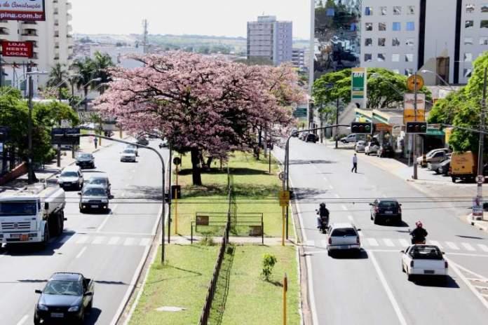 Bauru é uma das melhores cidades para criar os filhos no Brasil