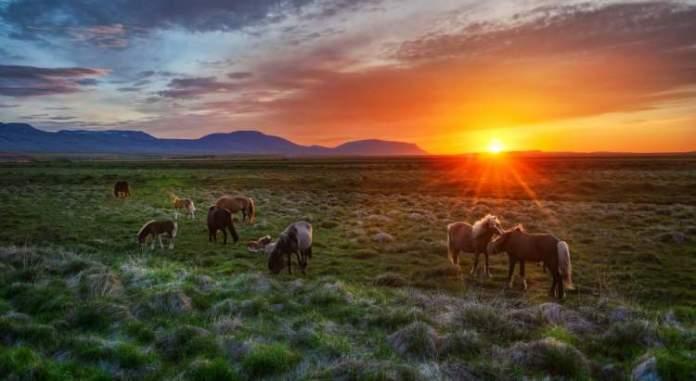 Islândia é um dos melhores destinos para viajar em Junho