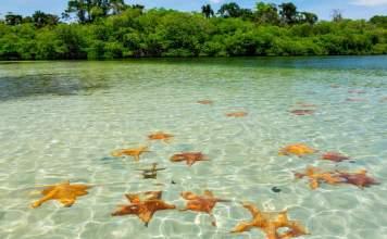 Bocas del Toro Panamá capa