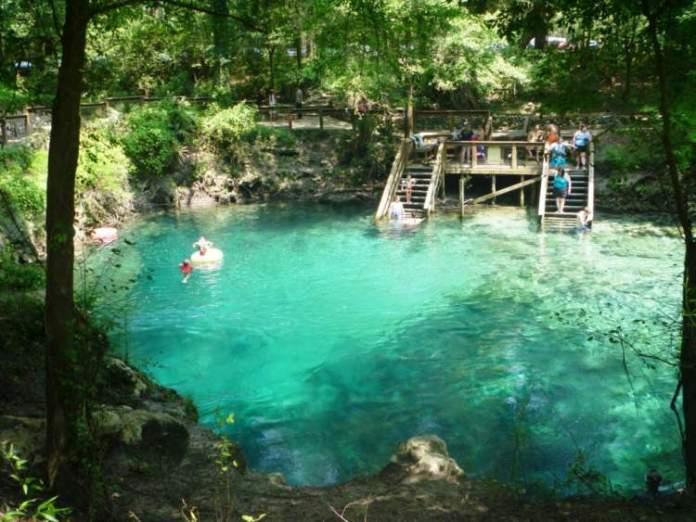 Conhecer o Parque Estadual Wekiwa Springs State Park é uma das ideias do que fazer em Orlando