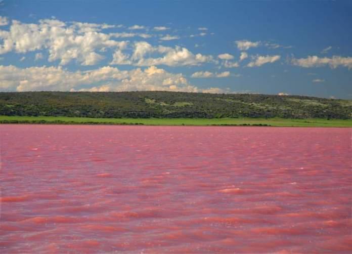 Masazirgol em Azerbaijão é um dos lagos cor de rosa existentes ao redor do planeta