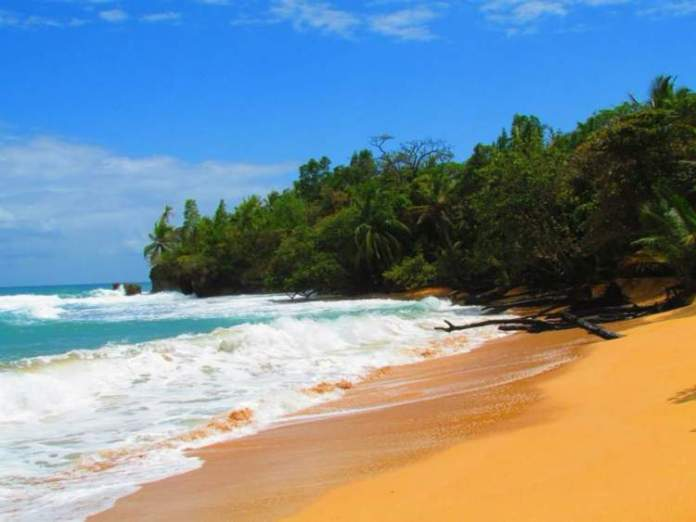 Playa Bluff em Bocas del Toro Panamá