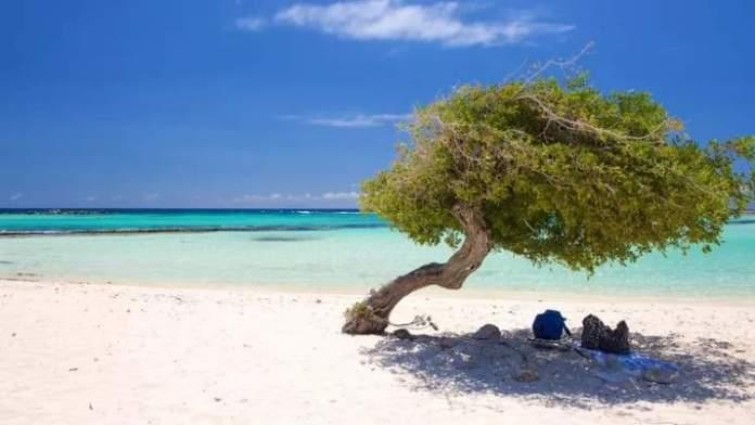 Melhor época para ir a Aruba post