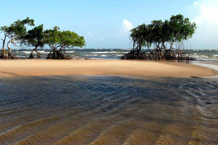 Ilha de Marajó é um dos destinos baratos para viajar no norte do Brasil