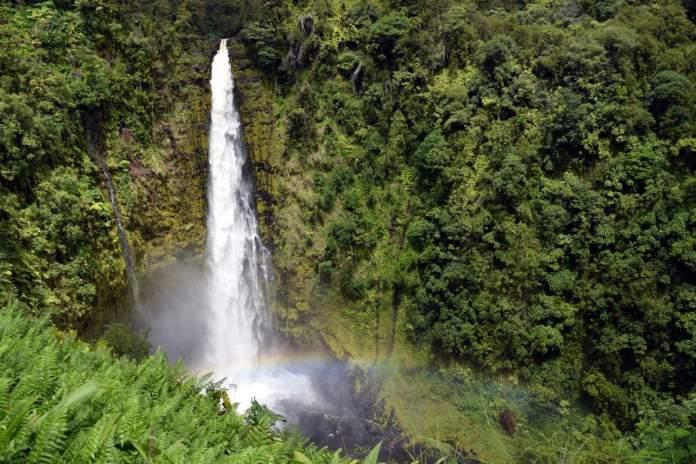 Akaka Falls State Park em Big Island, Havaí